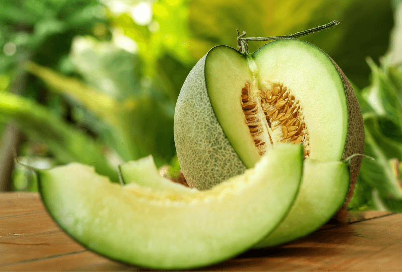 honeydew-melon_1566951062797