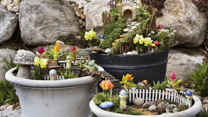 how-to-create-a-fairy-garden_1575954476465