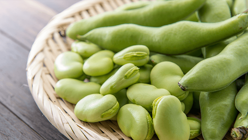 prolific-broad-beans_1558919692323