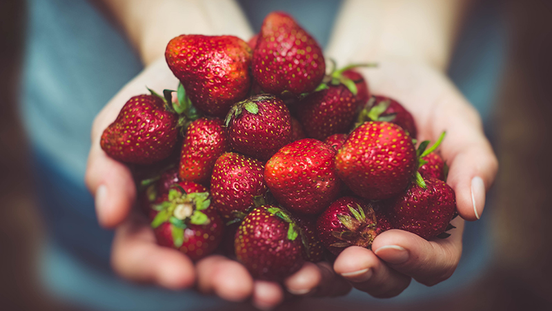 how-to-grow-strawberries_1551155007043