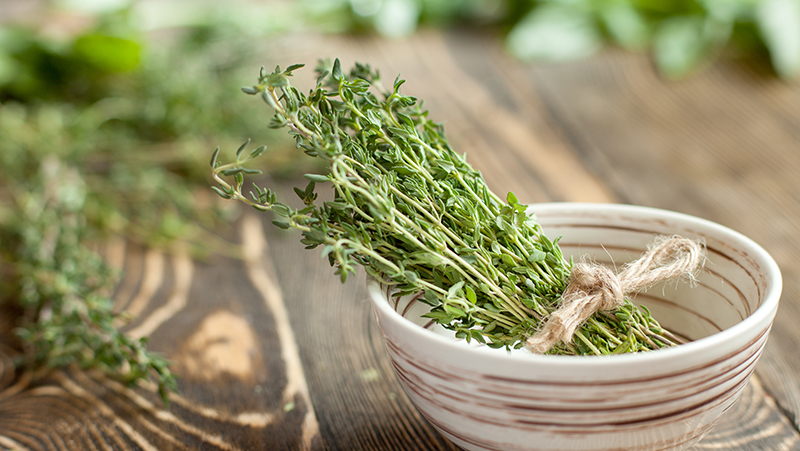 how-to-grow-thyme_1551160327515