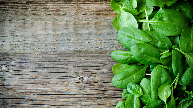 how-to-grow-spinach_1551160523154