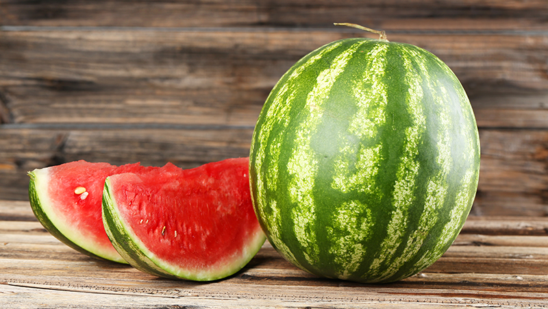 how-to-grow-melons_1551155008210